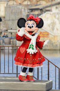 TDS クリスマス・ウィッシュ ホリデーグリーティング・フロム・セブンポート 2014 ミニーマウス