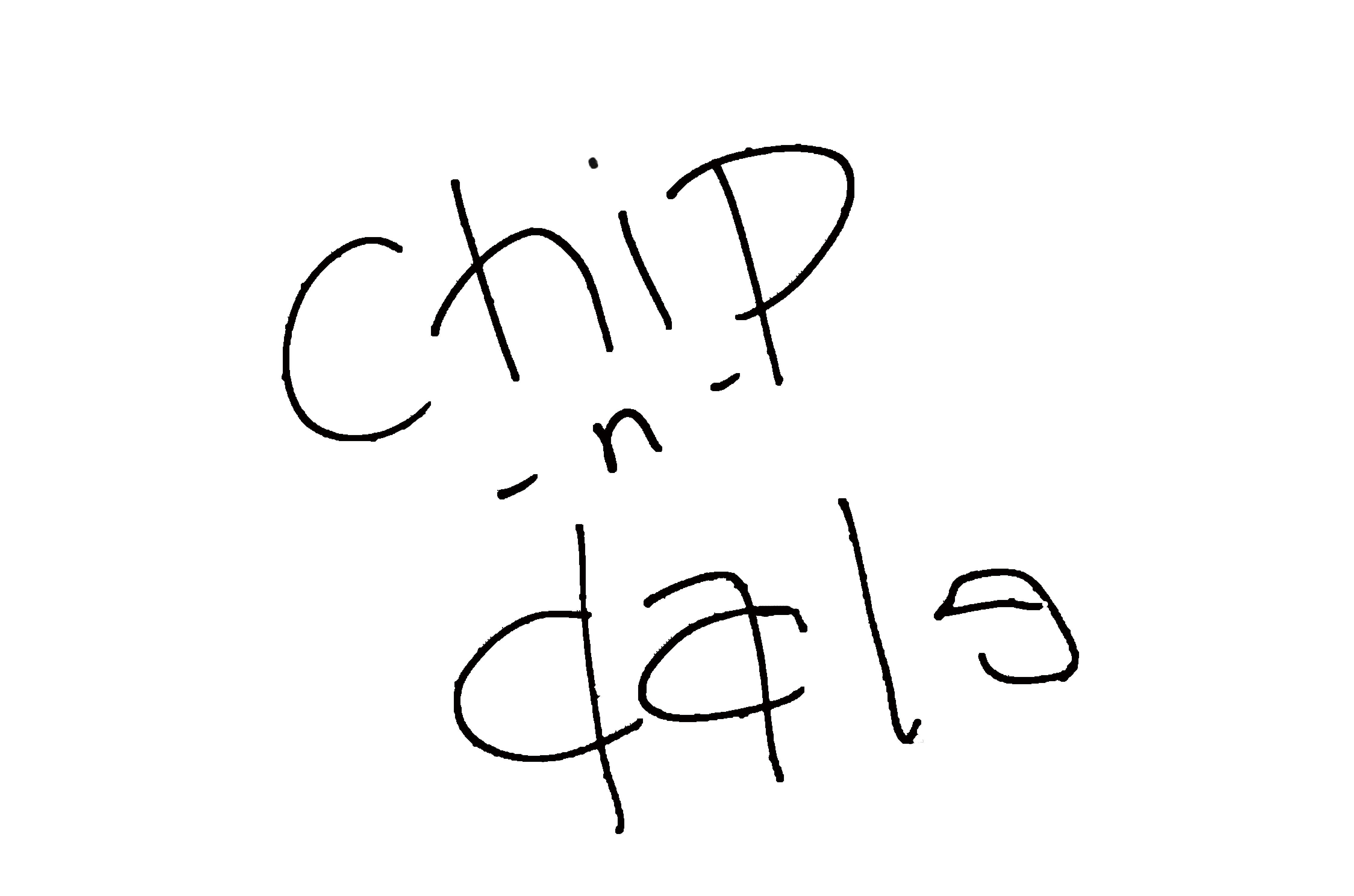 DSC_2295 のコピー