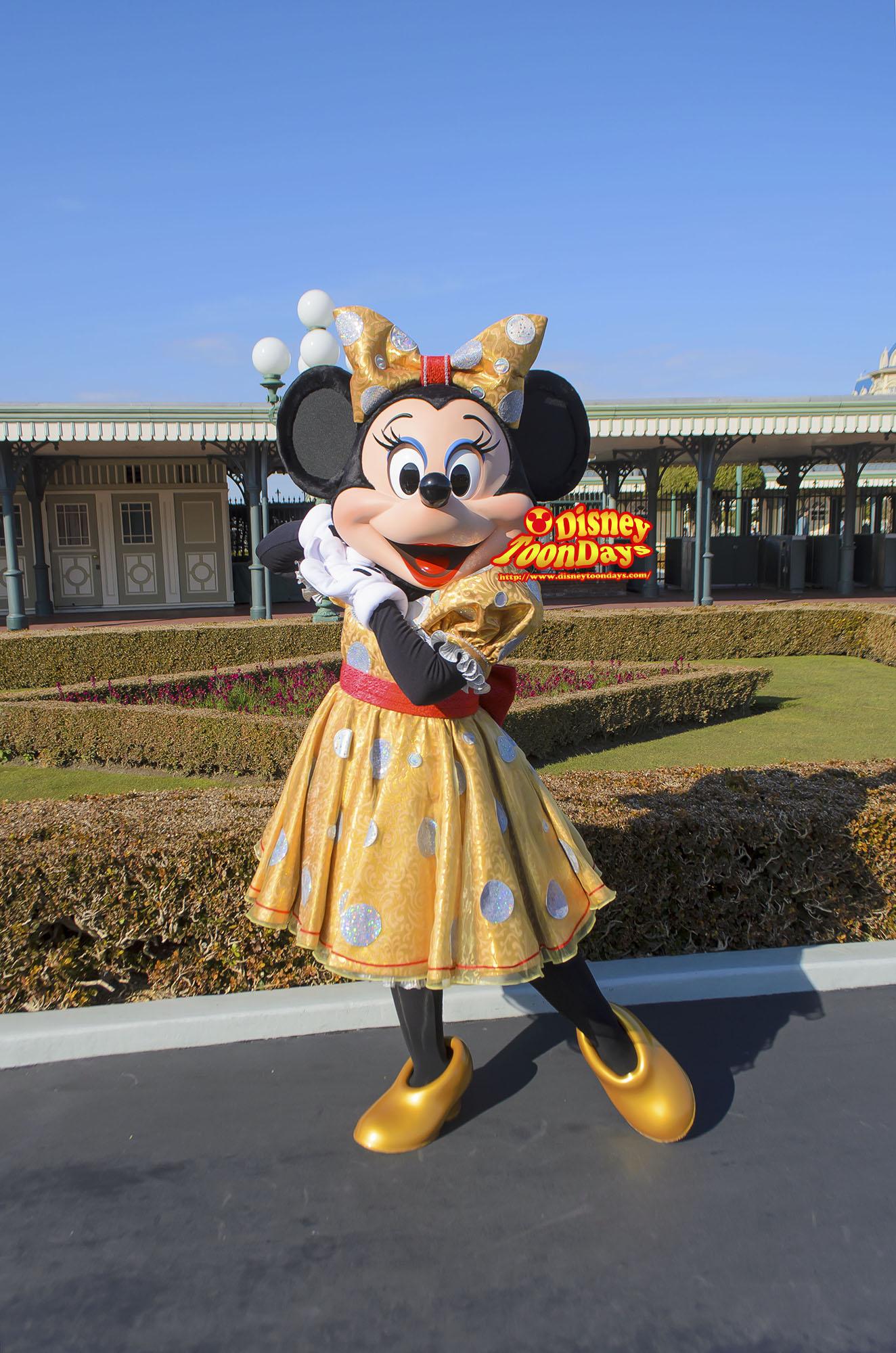 TDL エントランス グリーティング 30周年限定 ミニーマウス